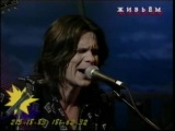 ЧИЖ и Ко. TV-Live в программе