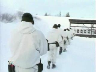 Финская армия (Военное дело)