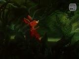 Допрыгни до облачка (1988) ♥ Добрые советские мультфильмы ♥ http://vk.com/club54443855