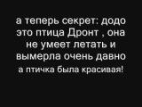 пасхалка GTA III додо
