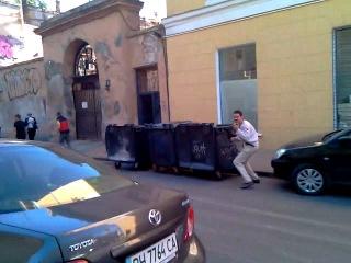 Дикий Регис в Одессе