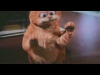 """Кот-Гарфилд..песня """"Эй толстый""""=)"""