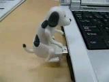 USB Флешка Ха-ха-ха