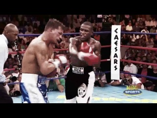 Mayweather лучший боксёр после мухамеда али тайсона и роя джонса