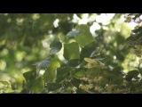 Sunny Rain|Marselle Art Studio