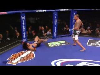 Самый красивый удар ногой в голову в MMA