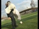 Брат женился!!!:)