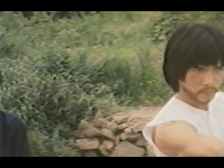 Орел против Серебряного Лиса (1982)