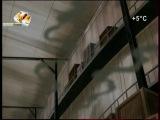 Мумия 1 сезон 12 серия