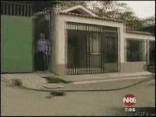 Мексиканский спецназ в работе