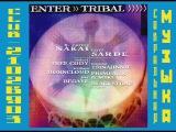 R. Carlos Nakai And Cliff Sarde - Enter Tribal