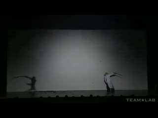 самурай и тень
