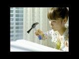 Aoi Miyazaki CM DARS Chocolate