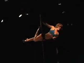 соревнования по танцам на шесте 2009