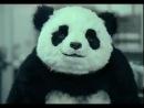 Panda Cheese: You Can't Say No to Panda