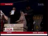 Праздник вина 2010. Мукачево. 15- летие фестивалю.