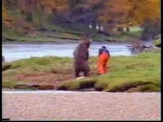 ...избил медведя и поел )