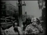 Big Mama Thornton, John Lee Hooker, Big Walter Horton, Dr.Ross - Down Home Shakedown