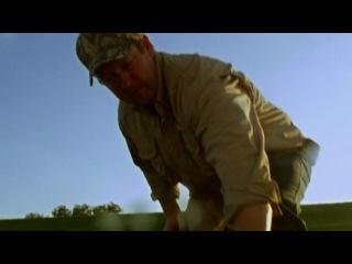 Болотная акула  (ТВ) / Swamp Shark (2011)