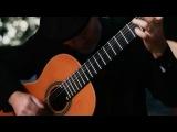 Mason Williams - Classical Gas (Vanessa-Mae)