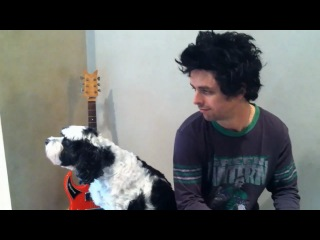 Billie Joe Armstrong and his dog Rocky - Viva la Gloria!