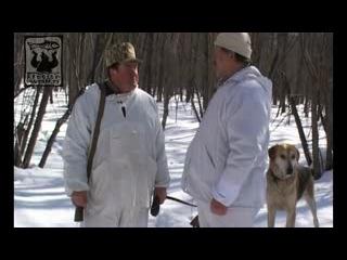 С русскими гончими по чёрной и белой тропе.