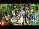 молнии-убийцы в Африке ( июль 2011)