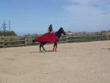 Парная езда.
