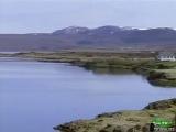 BBC: Мир природы. Стойкие утки