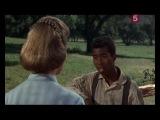 Шенандоа  Shenandoah (1965)