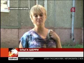 Спасенный нижегородскими блогерами кот ищет новый дом и имя
