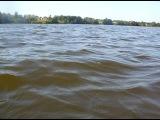 Плавание в озере Сювеярви в субботу 27 августа 2011 года