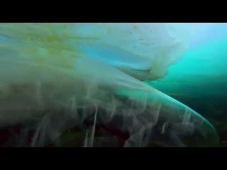 Сирена (видео на тему песни из к/ф