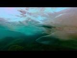 Loreena McKennitt - Night Ride Across the Caucasus. HD (OST Солдат)