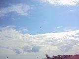 Маневрирование в воздухе и приземление профессионалов 1 (6.08.2011)
