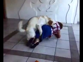Собака трахает бабушку (не порно)