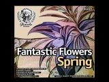 FANTASTIC FLOWERS Релиз (Весна 2011)
