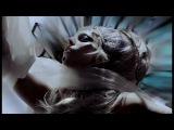 Лада Гага - Рождена такой