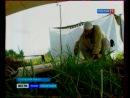 """Фестиваль """"Хельга 2011"""" - Репортаж, Сюжет ГТРК """"Псков"""""""