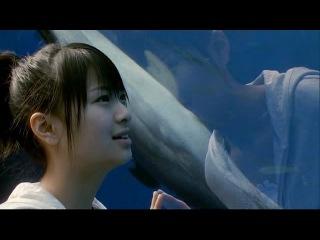 Я люблю свою сестрёнку / Boku wa imouto ni koi wo suru(2007) ( субтитры)