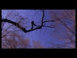 Wax Poetic - Angels (feat. Norah Jones)