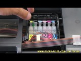 Обнуление чипа СНПЧ (Epson Stylus Photo T50)