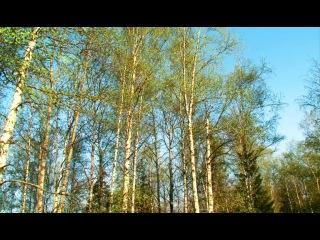 Весь Южный Урал. Фильм 5-й. Тайны Уфимского плато.