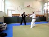 Кик-боксинг 2011: защита от прямых