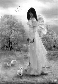 White †♥♥♥Angel♥♥♥†