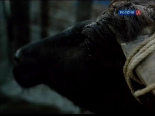 Культ кино с Кириллом Разлоговым. Граница (2011.01.23.)
