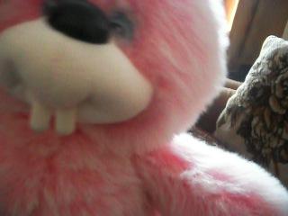 Бешеный заяц!! уввваааххххааа!!=))