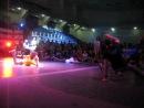 FLYING UP! FAM || House Showcase on UDS_8