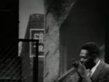 Big Walter Horton - Shaky's BLues