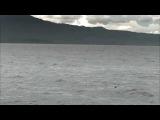Jonas Steur ft. Jennifer Rene- Still I Wait (Richard Durand's In Search Of Sunrise Mix)_(360p)